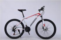 BEGASSO LEGEND MTB kerékpár